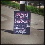 One of the more amusing signs from last year when the swans were getting a bit nippy on the path