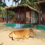 Full sea view hut