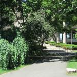 Walking through the campus