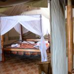 executive Beds