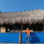 An exterior shot of Dolphin Tiki
