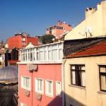 Вид на крыши, по которым гуляют чайки