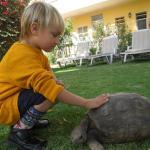 Nuestro hijo jugando con la tortuga que vive en el hotel.