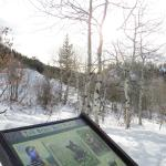 Gorgeous winter day-- easy hike