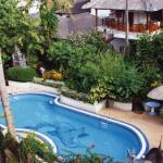 Mimpi Pool