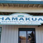 Hamakua Macadamia Nut Co