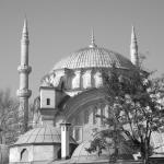 magnifique mosquée
