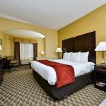 Comfort Suites Near Stone Briar Mall