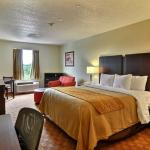 Photo of Comfort Inn Triadelphia