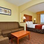 Comfort Suites Park Central