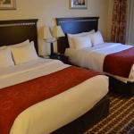 Comfort Suites SNQQ