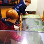 Connor & Avery enjoying watching the turtles