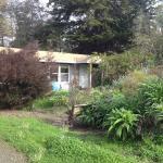 Front of Alder Cottage