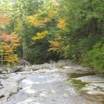 Beginning of foliage season - looking down cascade Brook