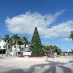 Downtown, Christmas Tree