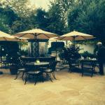 Cafe Verde Foto