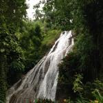 Shaw Park Falls