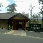 Eeescart Tea Centre