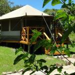 Superior Tent - Exterior view