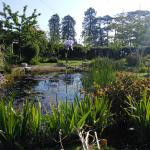 Pond in Guests' Garden