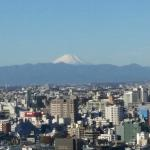 The room window has a view of mt fuji