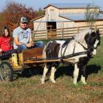 Binkey and cart