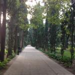 Paseo tranquilo por el Parque de la Constitucion de Marbella