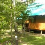 Side view from bungalow 205