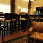 Foto de Hampton Inn & Suites Chicago-Saint Charles