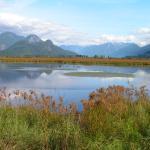 Pitt Polder Ecological Reserve
