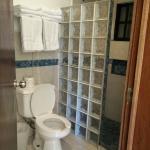 shower toilet