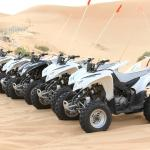 Desert Rose Tourism - Day Tours