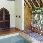 Outdoor shower and plunge pool