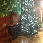 Fireplace & tree