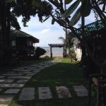 Utsikt från bungalow