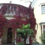 Peterhof, Cottage palace, fachada