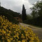 Vista sul Casolare