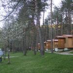 bungalow 4 plazas