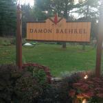 ภาพถ่ายของ DAMON BAEHREL