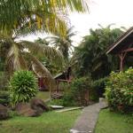 Vue sur les bungalows