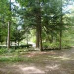 una delle zone del camping