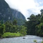 Camp 5 is situated beside the upper reaches of the Melinau river