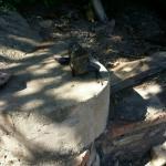 Foto de El Jardin Eco Retreat