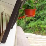 balcón parte de atrás