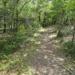 Buxton Woods Nature Trail