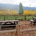 Hong Winery, Rutherford, Ca