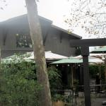 Honig Winery, Rutherford, Ca