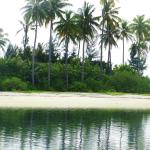 paradise island, un minuto a nuoto dall'estremo nord est dell'isola