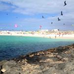 la playa e il festival degli aquiloni