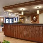 Best Western New Smyrna Beach Hotel & Suites Photo